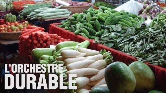 vignette_OrchestreDurable-